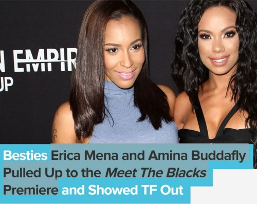 Erica Mena Amina Buddafly Meet the Blacks